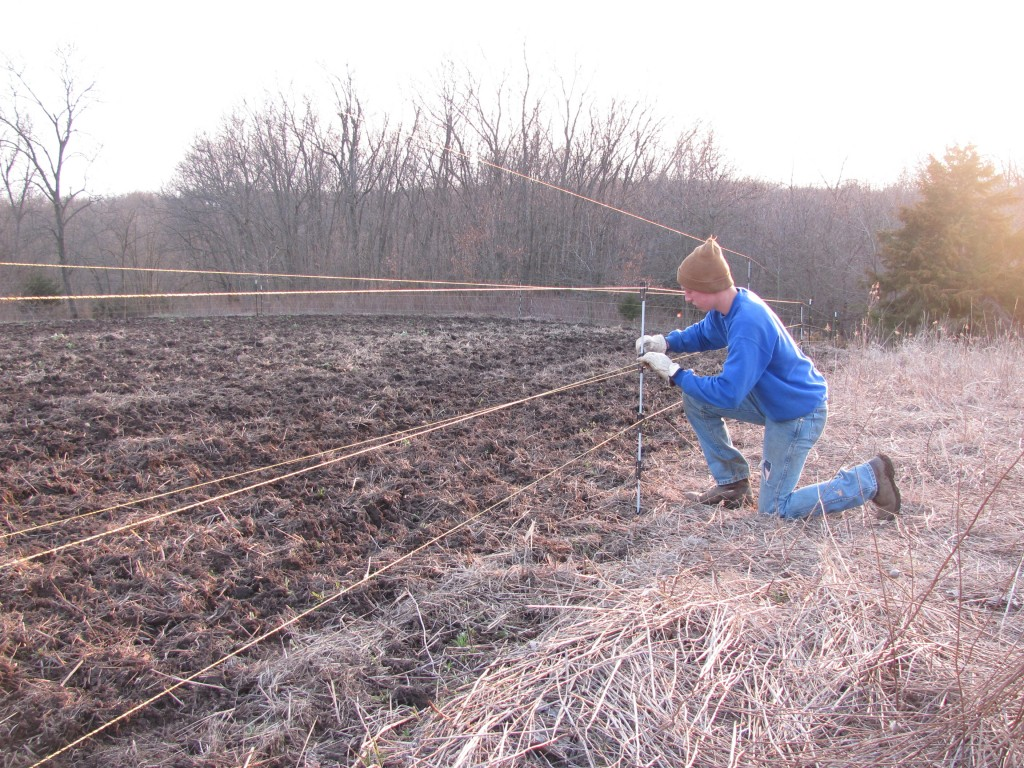 Electric fence iowa outfitters full potential outdoors