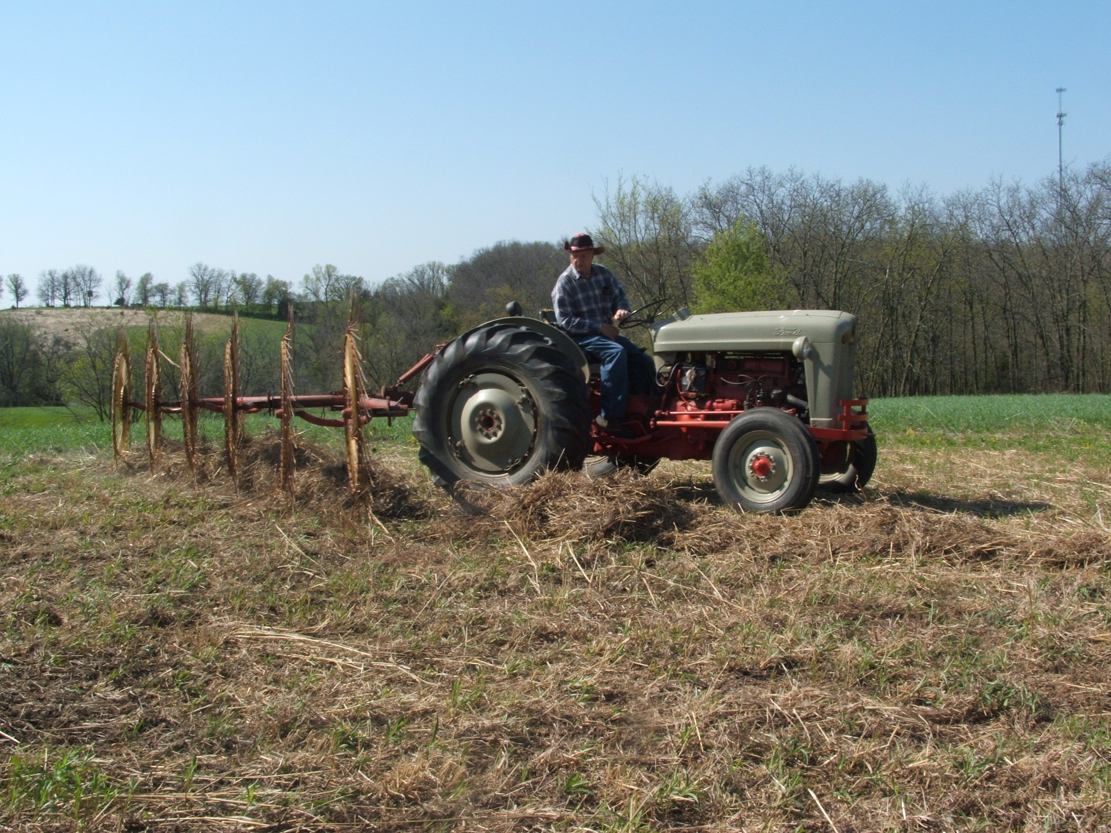 My dad raking off the mowed switch grass preparing a seed bed for expanding a food plot.