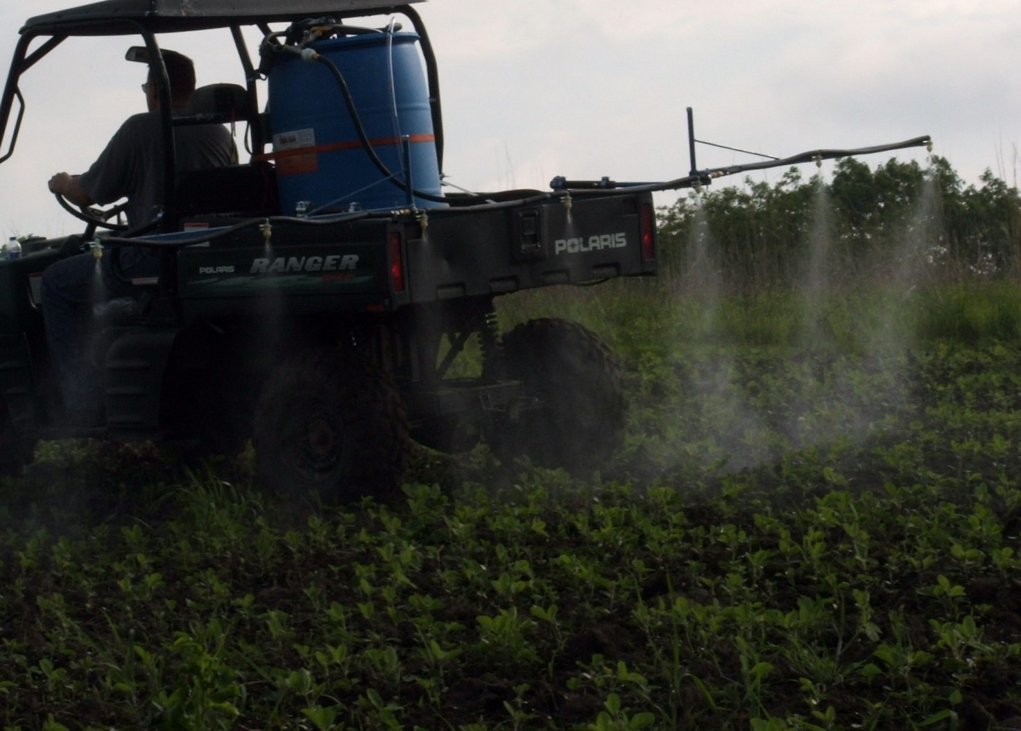 A properly calibrated sprayer can make easy work of spraying food plots.  My sprayer is set up to produce a medium mist pattern putting out 8 gallons of mixture per acre.