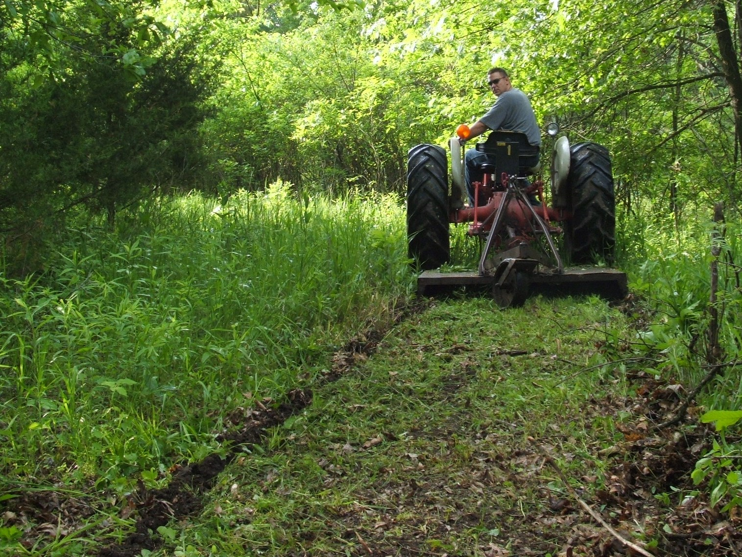 Mowing is a great way to prepare exit and entrance routes.  Mowing and spraying keeps vegetation down for a quiet walk and helps to also keep scent to a minimum.
