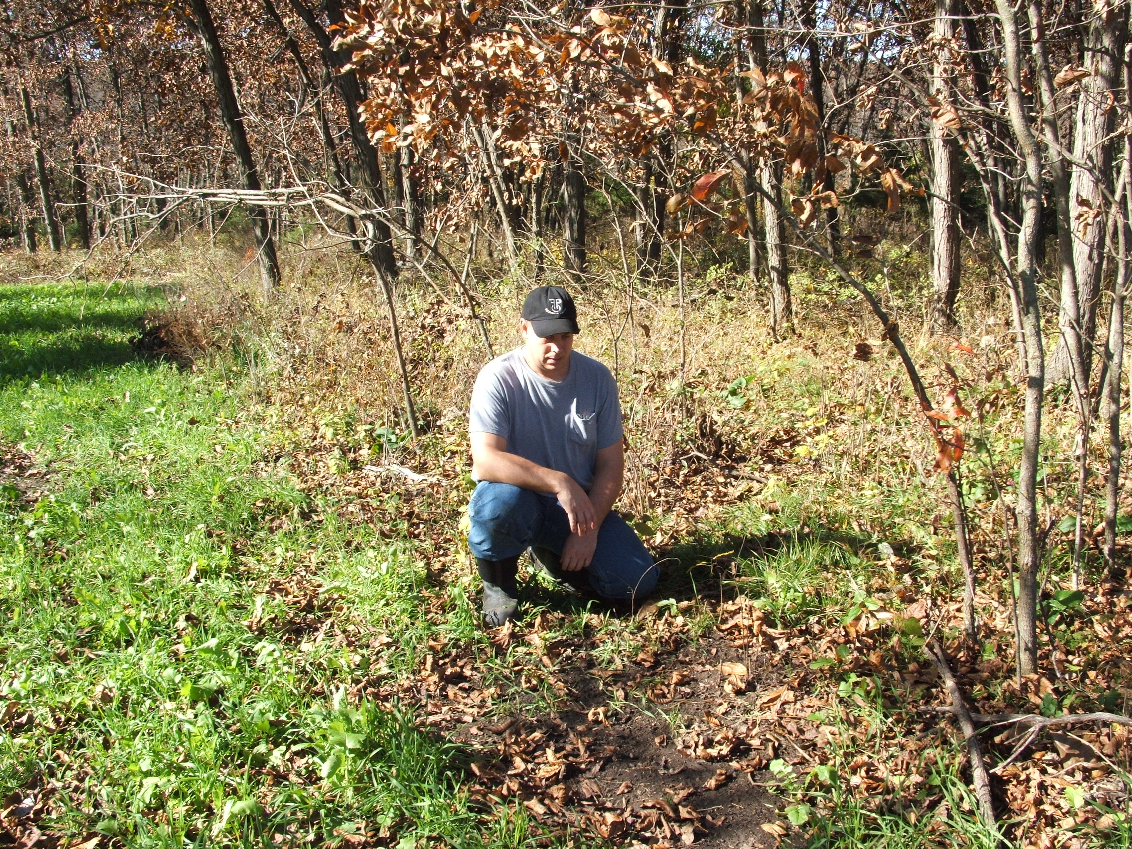 Gaining access to a farm/land that holds the type of deer you want to hunt...or better yet one that you can manage to achieve your goals is where any hunter should start . Without access, there is a good chance of going year after year feeling frustrated in your hunting season.